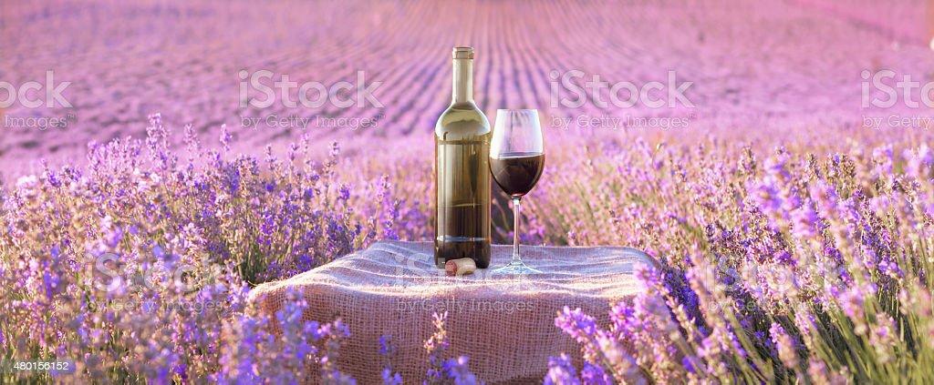 Bottle of wine against lavender stock photo