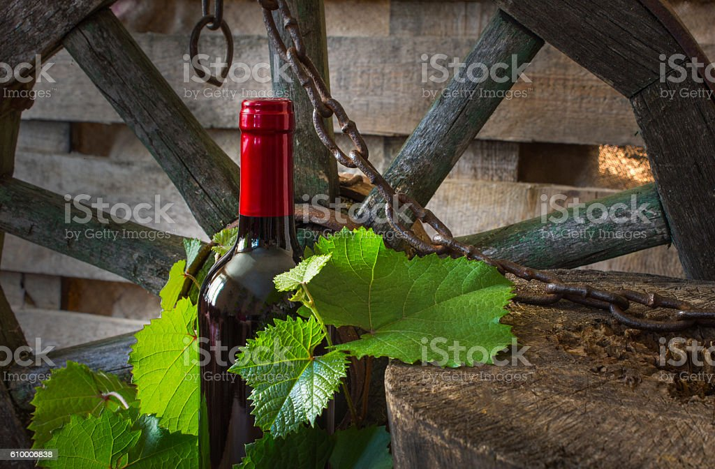 bottle of wine on the background of the vine stock photo
