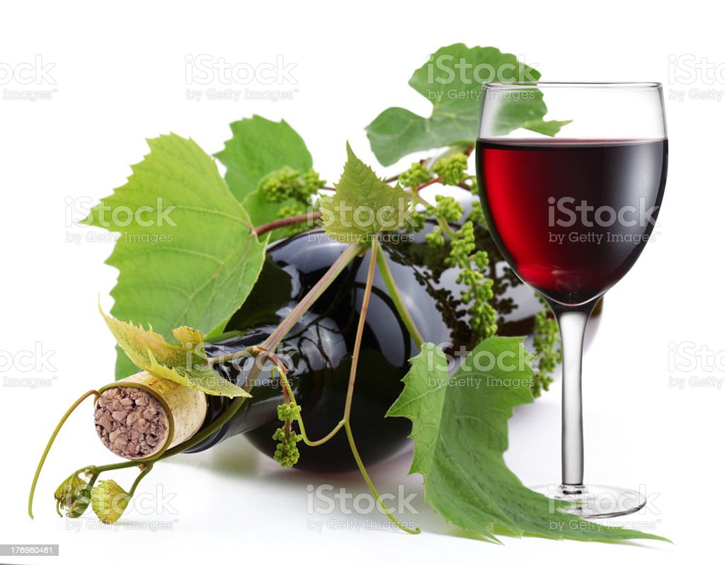 A bottle of wine that is in the vine  royalty-free stock photo