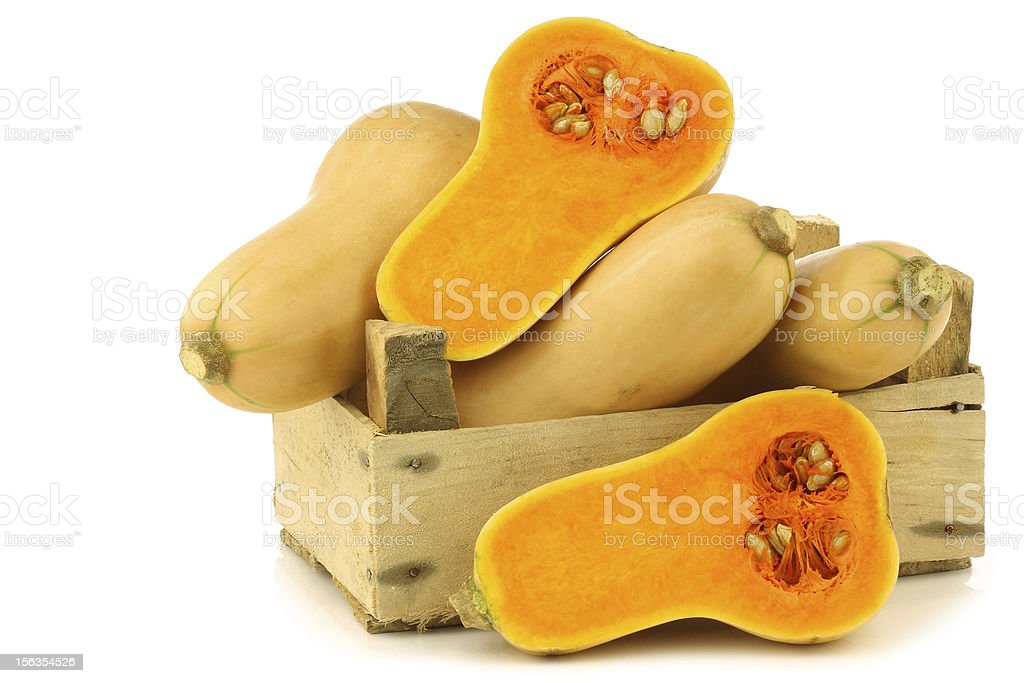 bottle shaped butternut pumpkins and two halves royalty-free stock photo