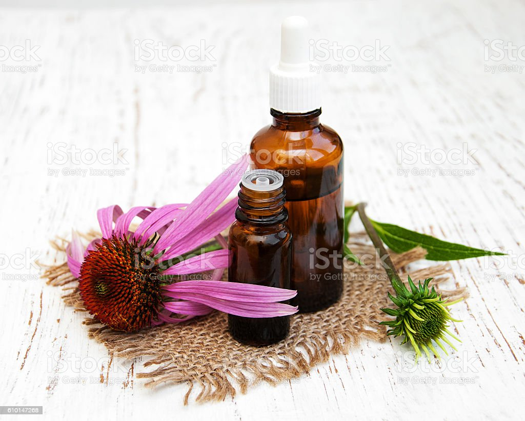 bottle with essence oil with purple echinacea stock photo