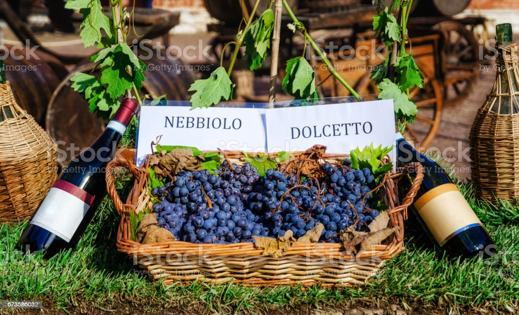 Bottles and grapes of nebbiolo and dolcetto wine stock photo