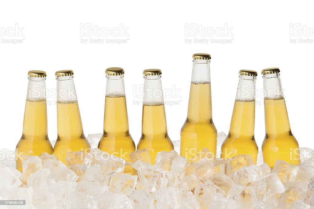 Bottles of beer in a row chilled on ice stock photo