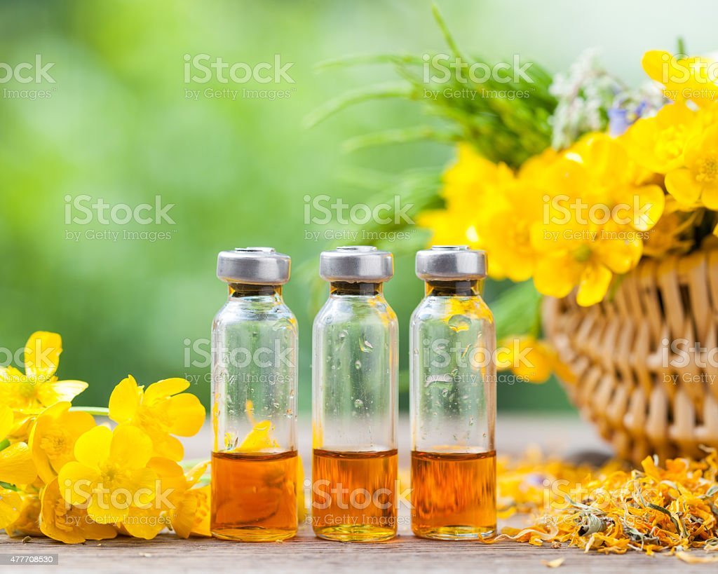 Bottles of healing plants treatment and healthy herbs stock photo