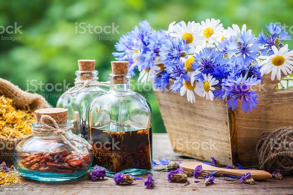Bottles of tincture and dry healthy herbs, bunch of flowers stock photo