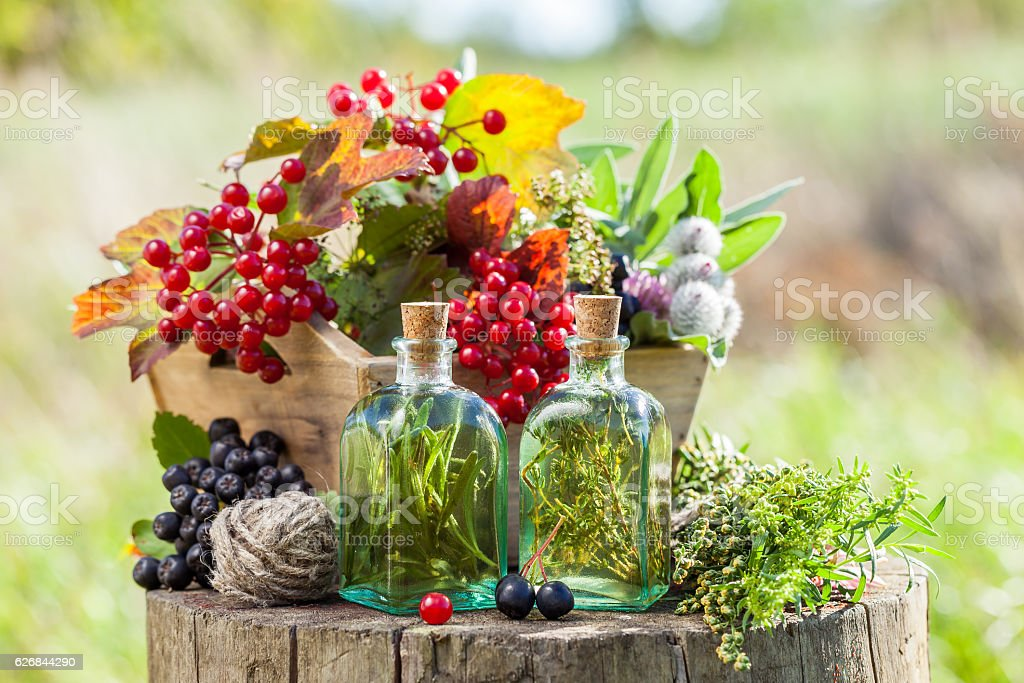 Bottles of tincture, healthy herbs and berries outdoors. stock photo