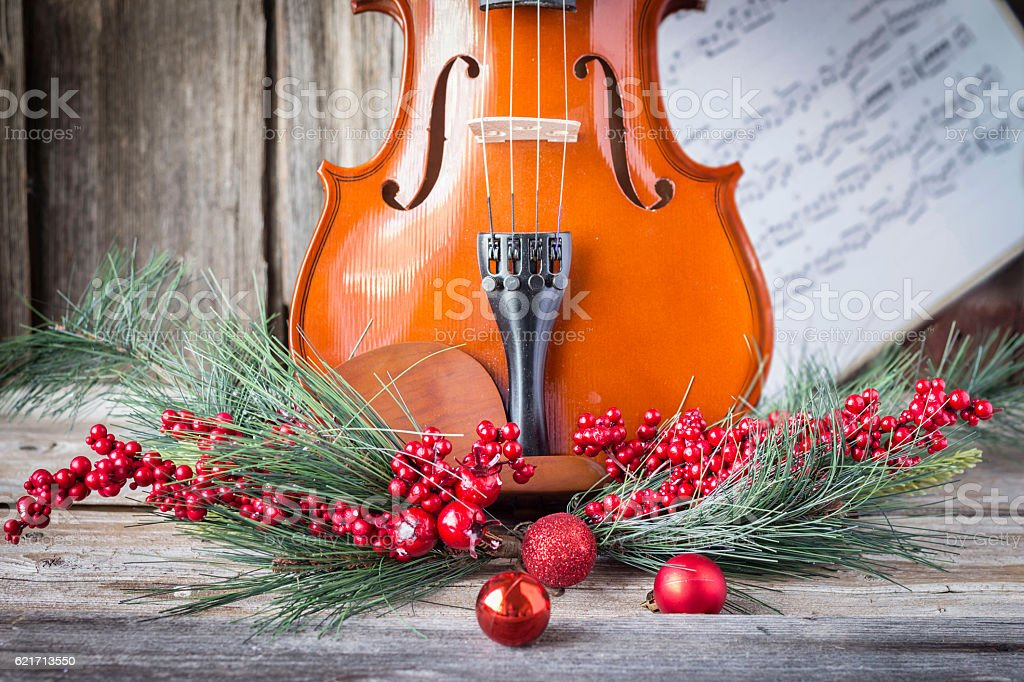 bottom half of violin surrounded with christmas fern and cranberries stock photo