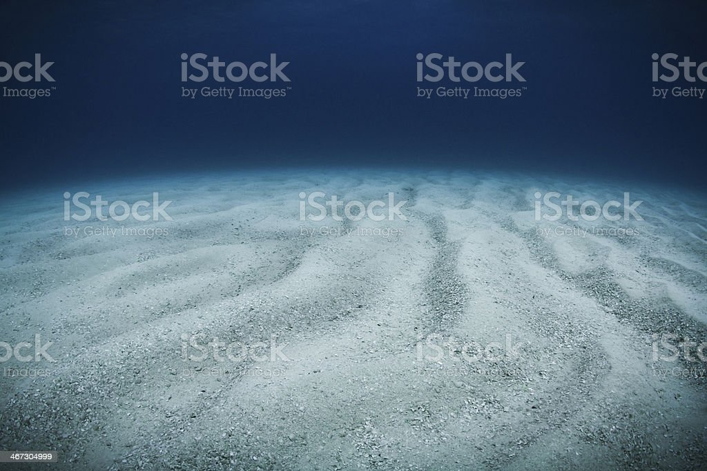 Bottom of the ocean floor with ripples of grainy sand stock photo