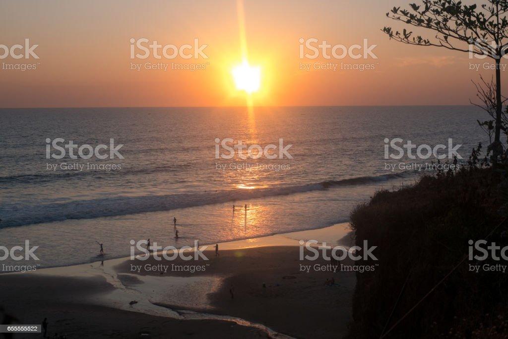 Bougainvillea and Orange Sunset above ocean Kerala stock photo