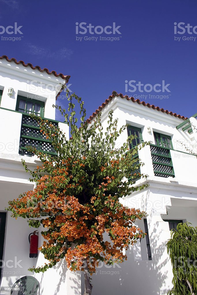 Bougainvillea Apartments royalty-free stock photo