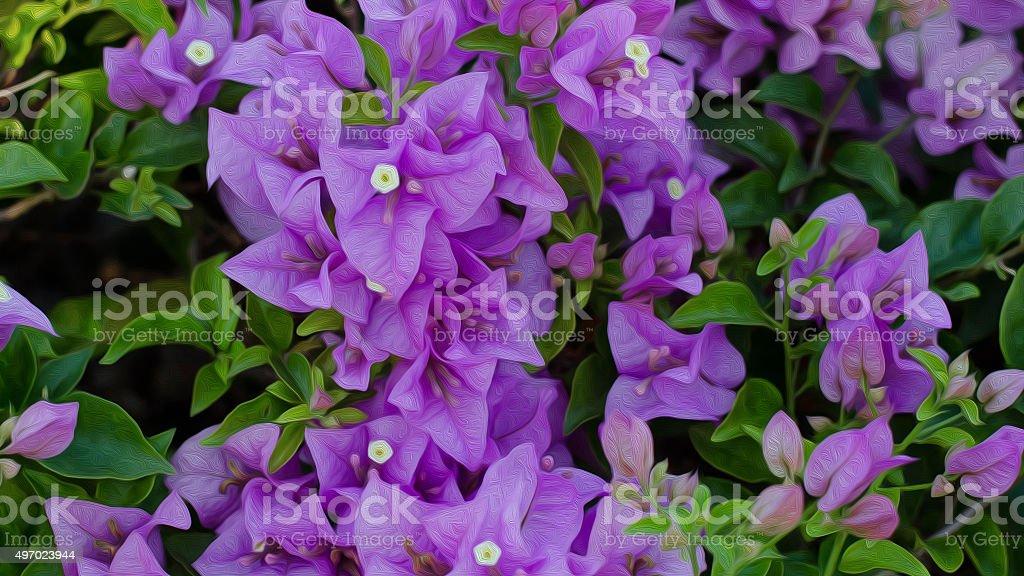 Buganvilia flor cuadro al óleo foto de stock libre de derechos