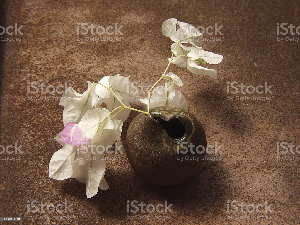 Bougainvillea   in the Japanese vase royalty-free stock photo