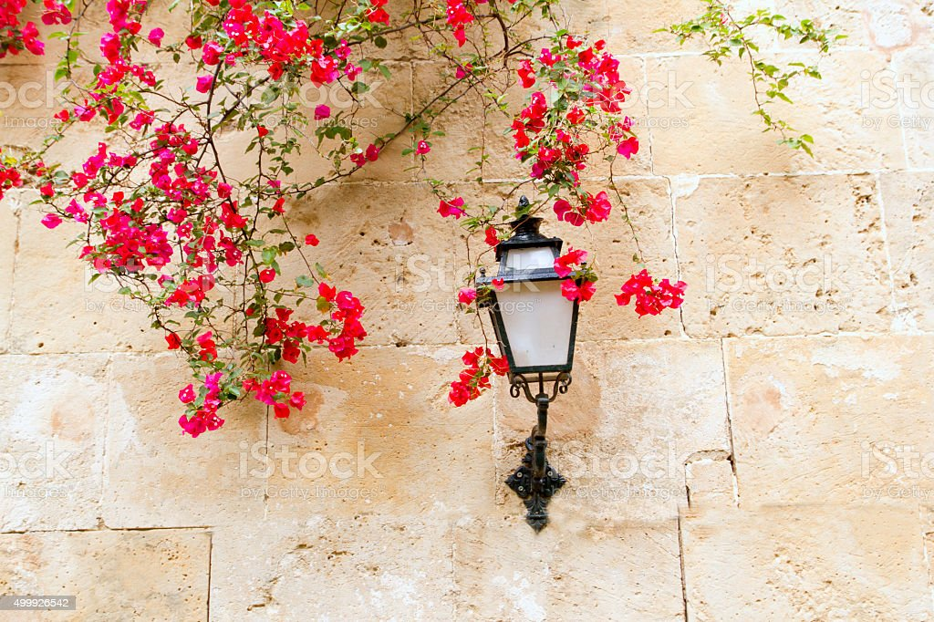 bougainvilleas  stone wall and street light in Mediterranean stock photo