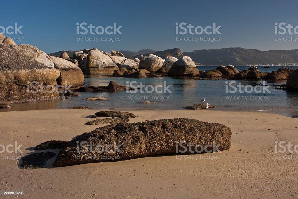 Boulder Beach - Cape Town stock photo