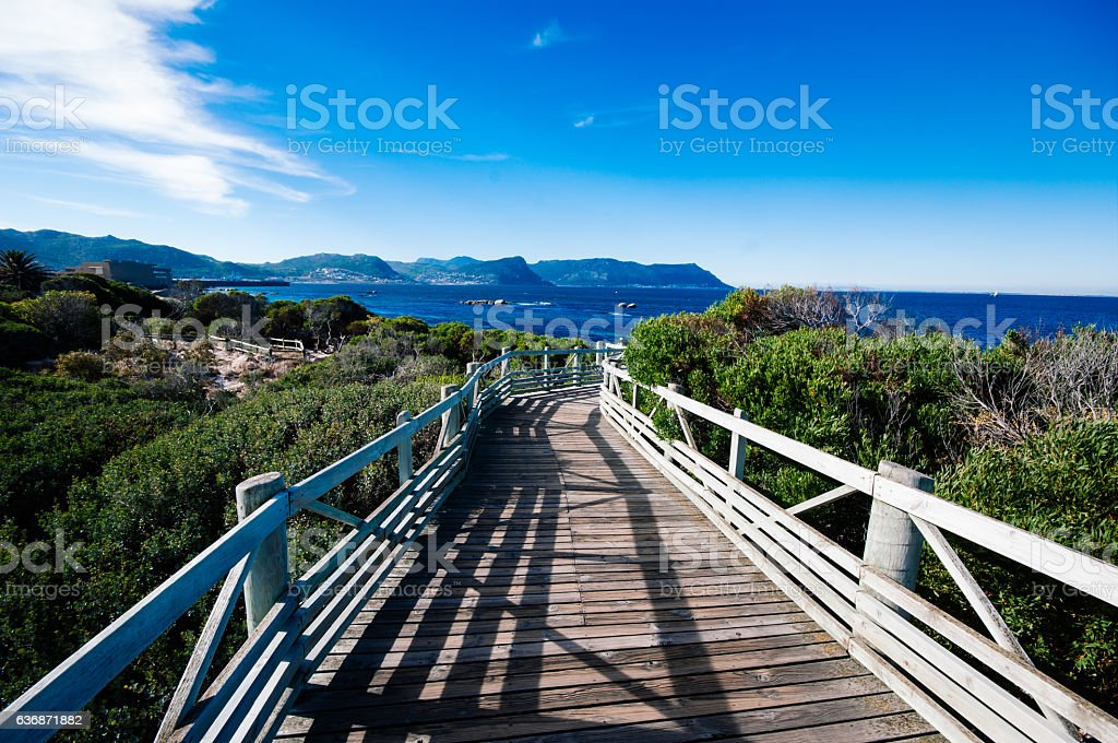 Boulder beach in cape town,South Africa stock photo