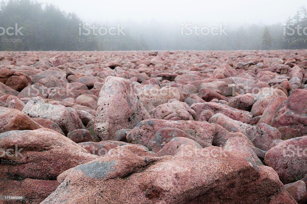 Boulder Field, natural phenomenon in Pennsylvania Hickory Run State Park royalty-free stock photo