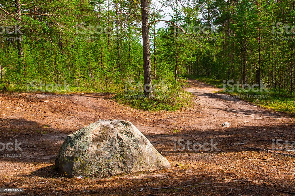 Boulder on road in forest stock photo
