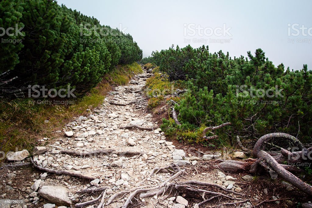 boulder road to High Tatra mountains stock photo