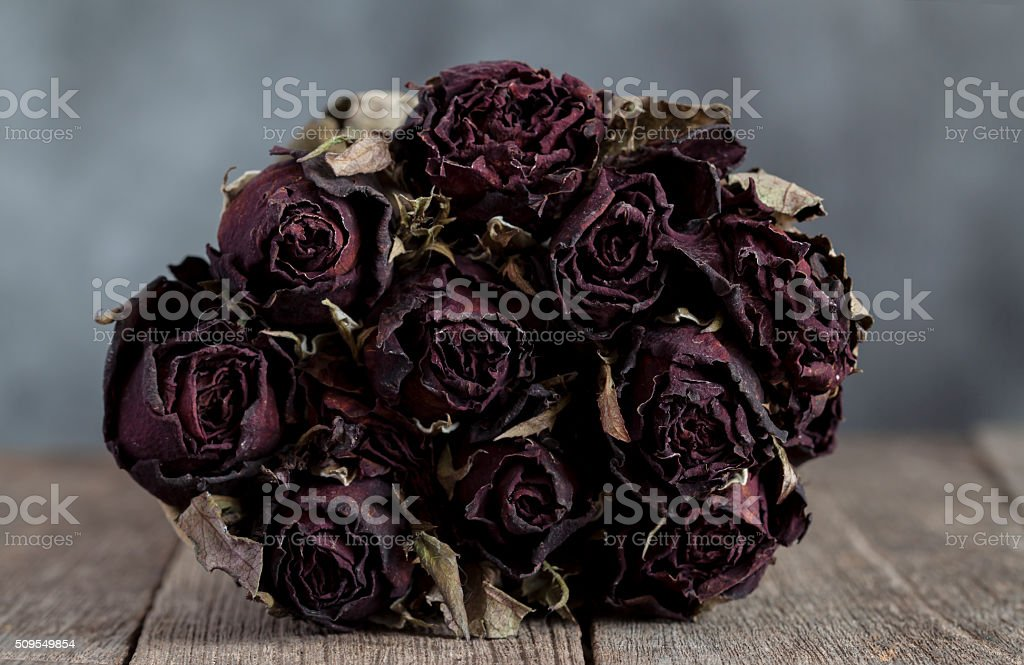 bouquet dried roses stock photo