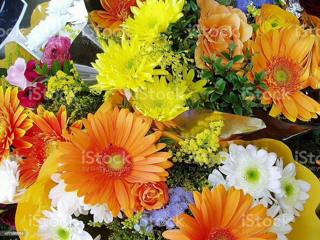 Bukiet kwiaty zbiór zdjęć royalty-free