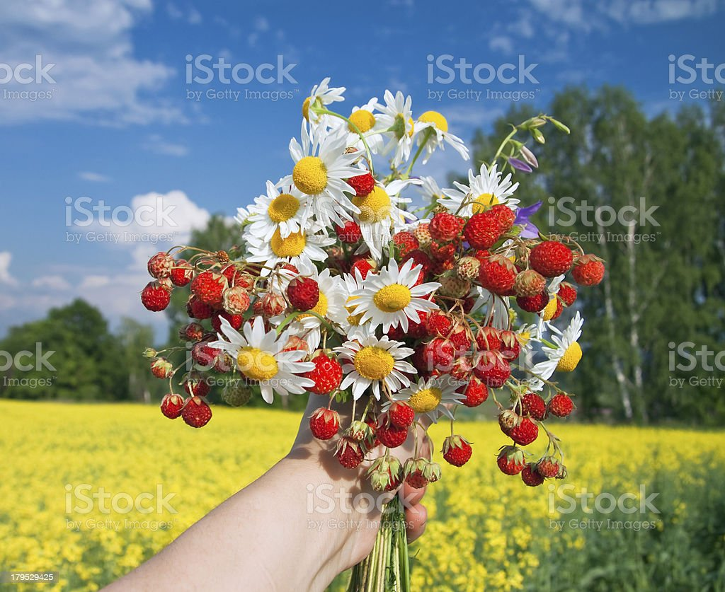 bouquet from flowers and berries royalty-free stock photo
