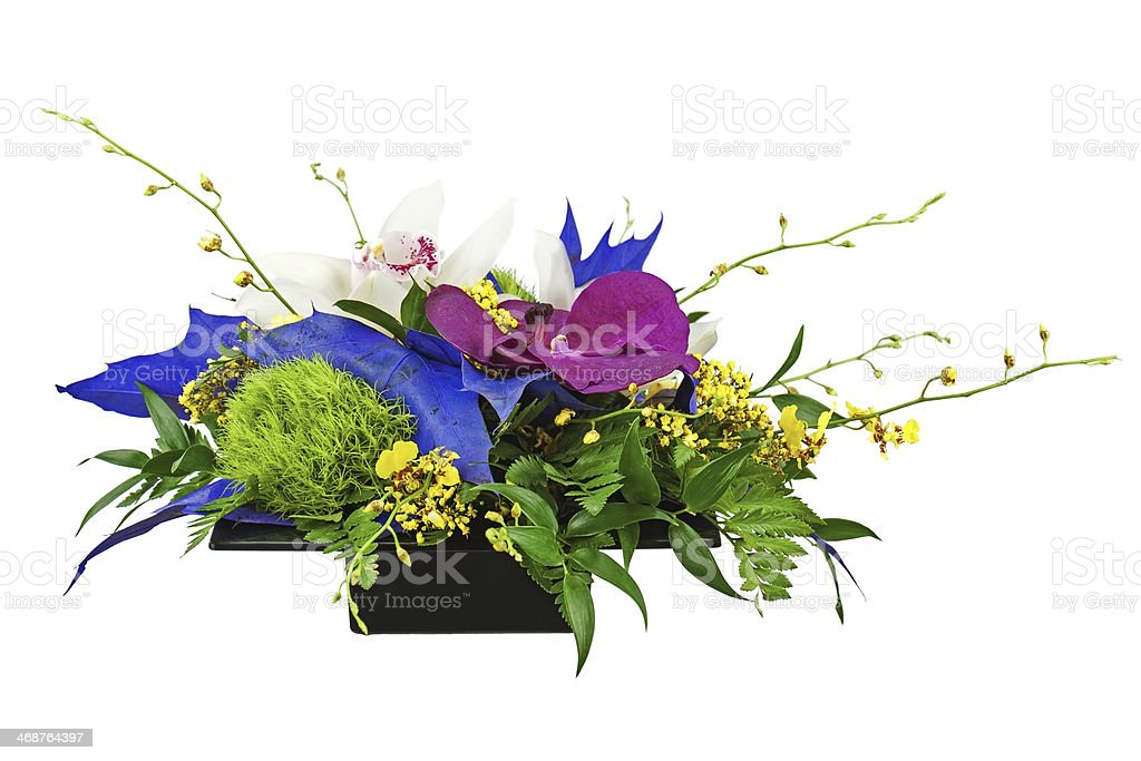 Bouquet from orchids in black vase isolated on white background. royalty-free stock photo