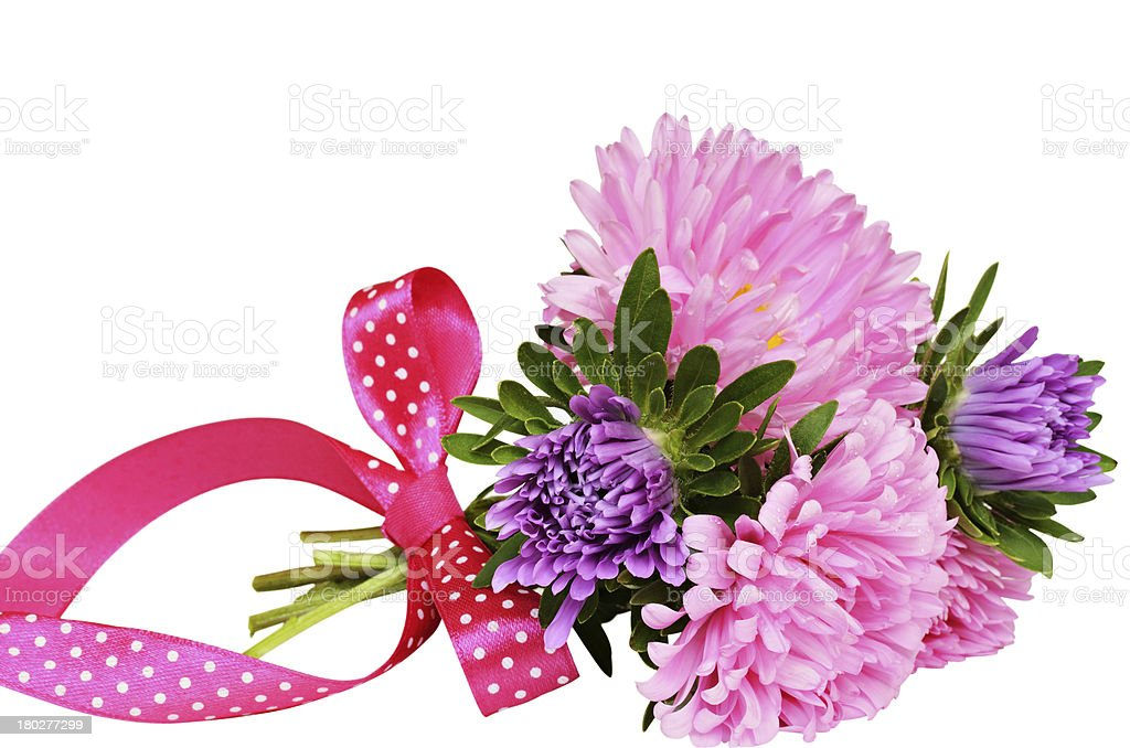 Bouquet of asters with bow stock photo