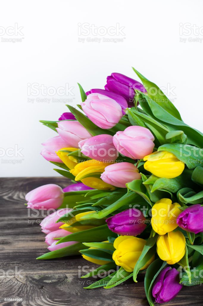 Bouquet of beautiful multicolor spring tulips on white and wooden background stock photo