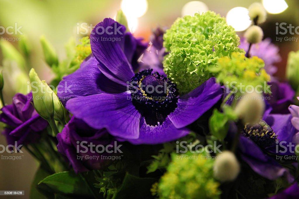 Bouquet of blue anemones stock photo