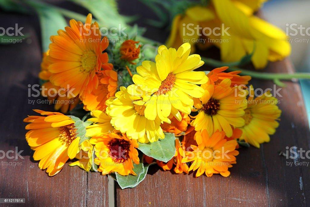 Bouquet of calendula flowers. stock photo