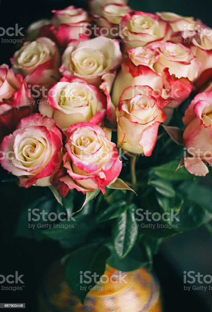 A bouquet of colorful roses in a vase. stock photo
