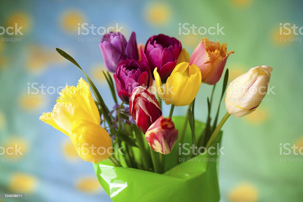bouquet of colorful tulip royalty-free stock photo