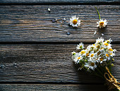 Bouquet of daisy flowers on wooden background