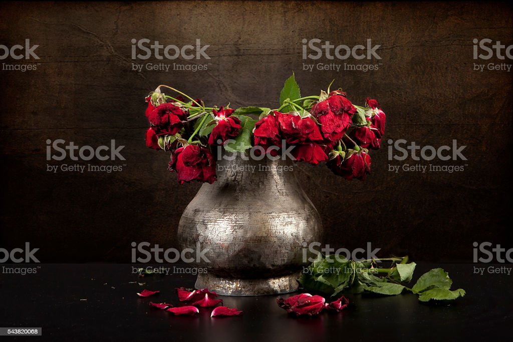 bouquet of dead red roses in silver vase, grunge background stock photo