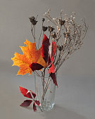 Bouquet of dry autumn leaves and plants