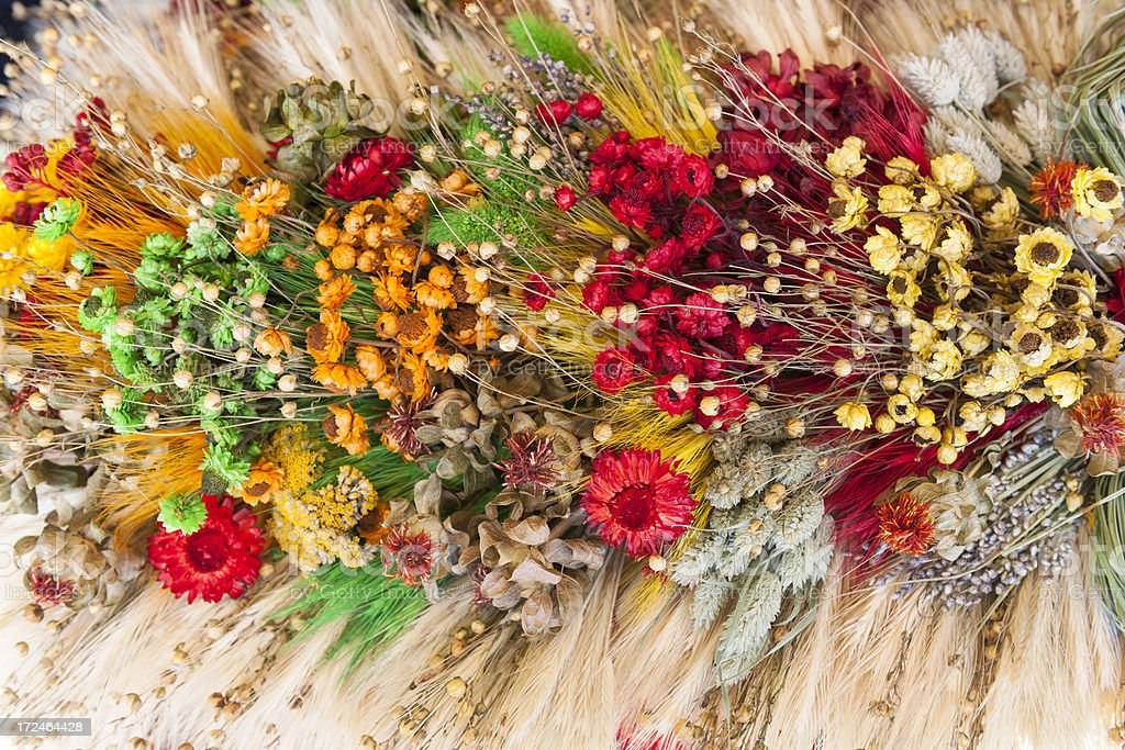 Bouquet of Dry Flowers and Wheat Ears Poland royalty-free stock photo