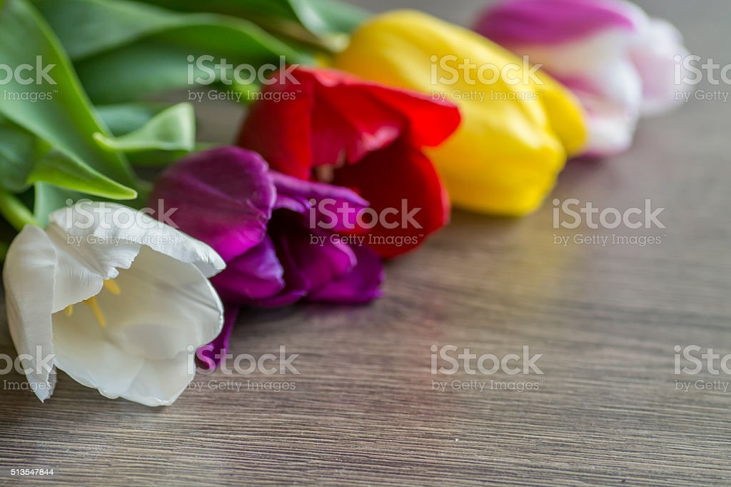 Bouquet of five delicate colored tulips on the table stock photo