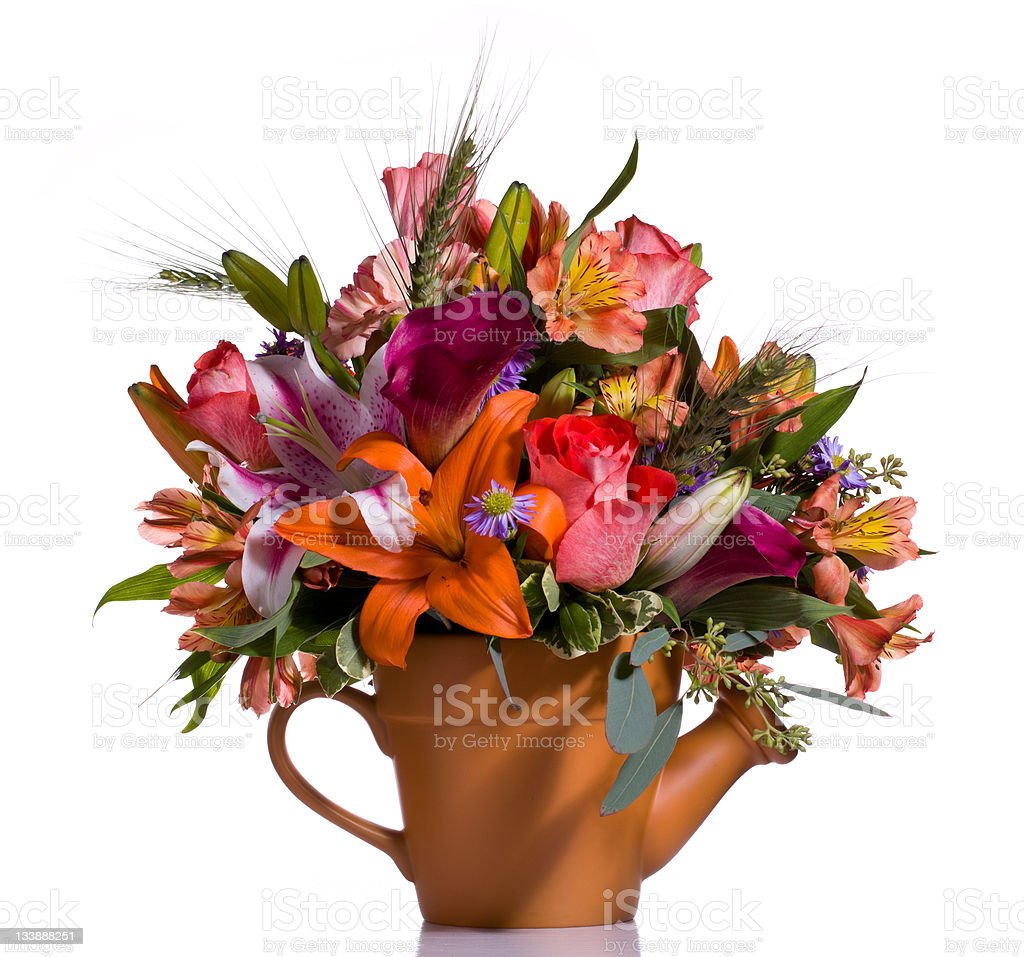 Bouquet of flowers in watering can royalty-free stock photo