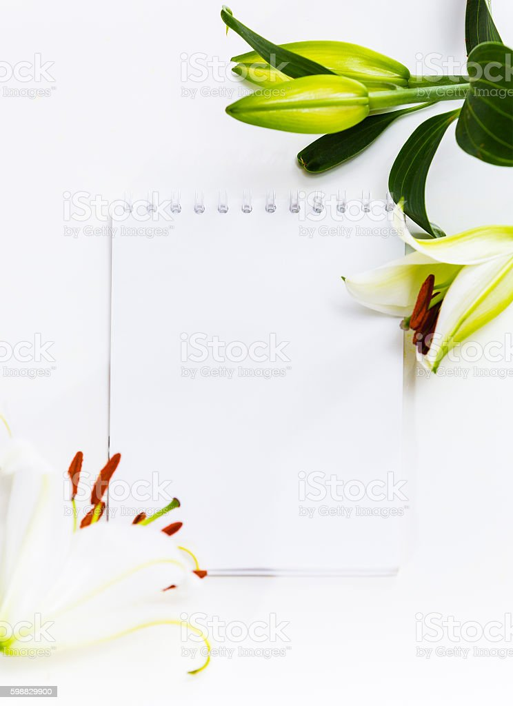 Bouquet of flowers lily empty paper sheet stock photo