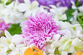 Bouquet of flowers Purple chrysanthemums with orchid