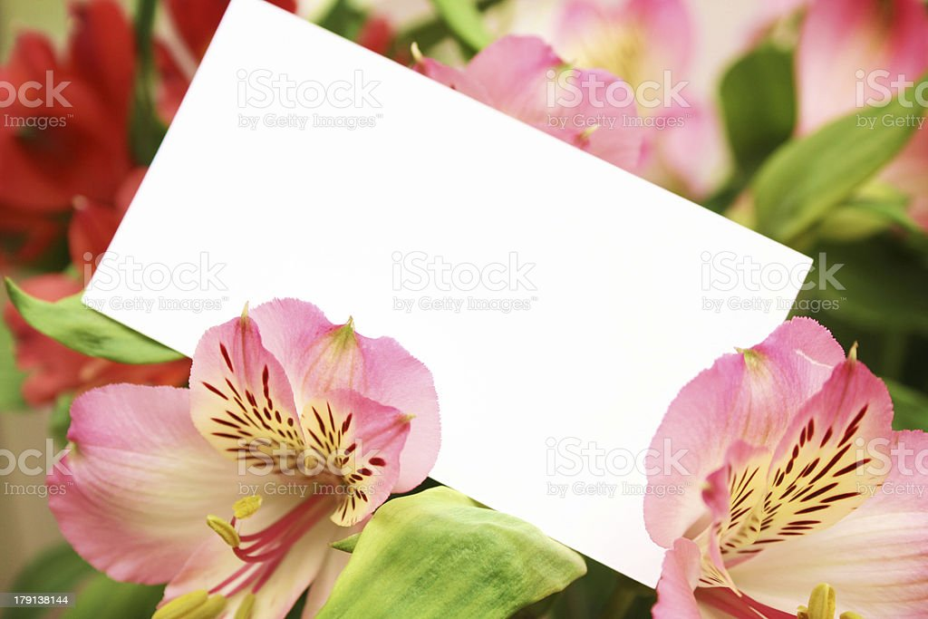 bouquet of flowers with a copyspace royalty-free stock photo