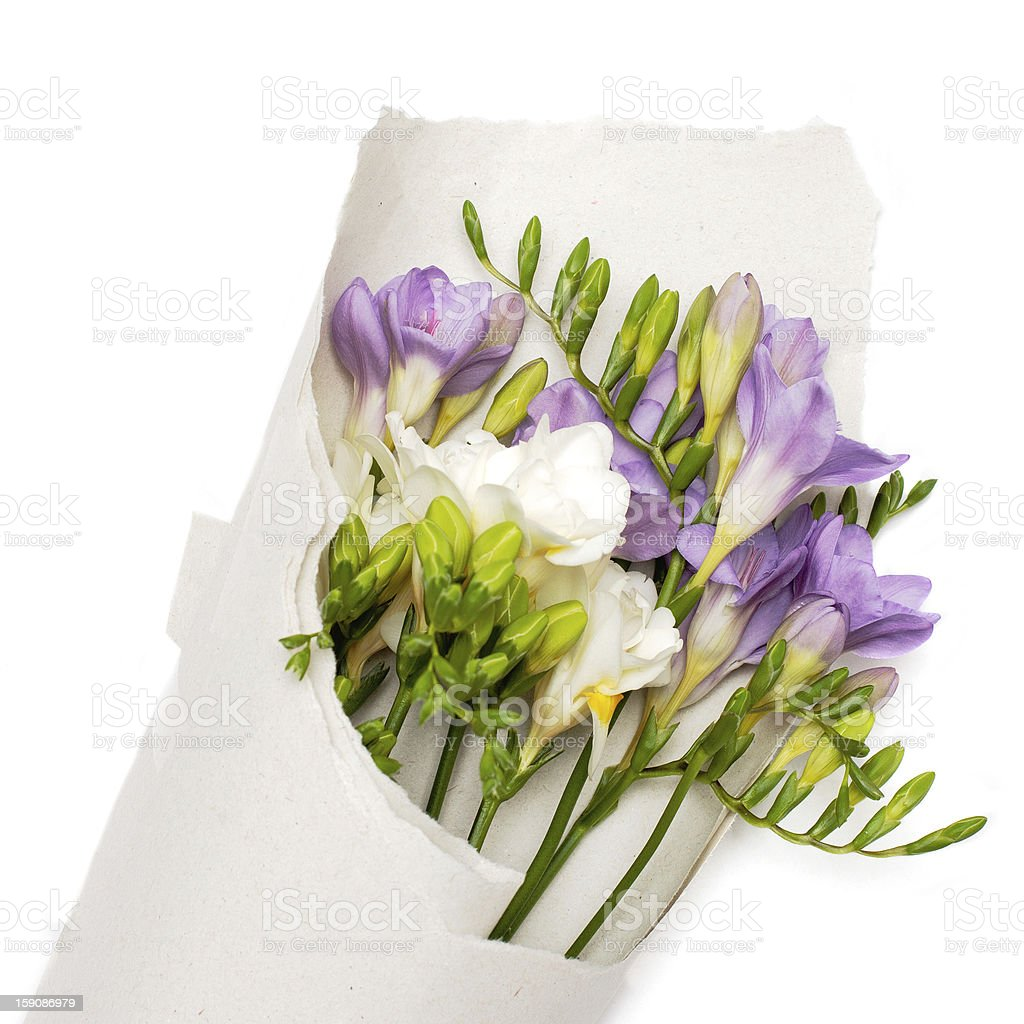 bouquet of freesia in the paper royalty-free stock photo