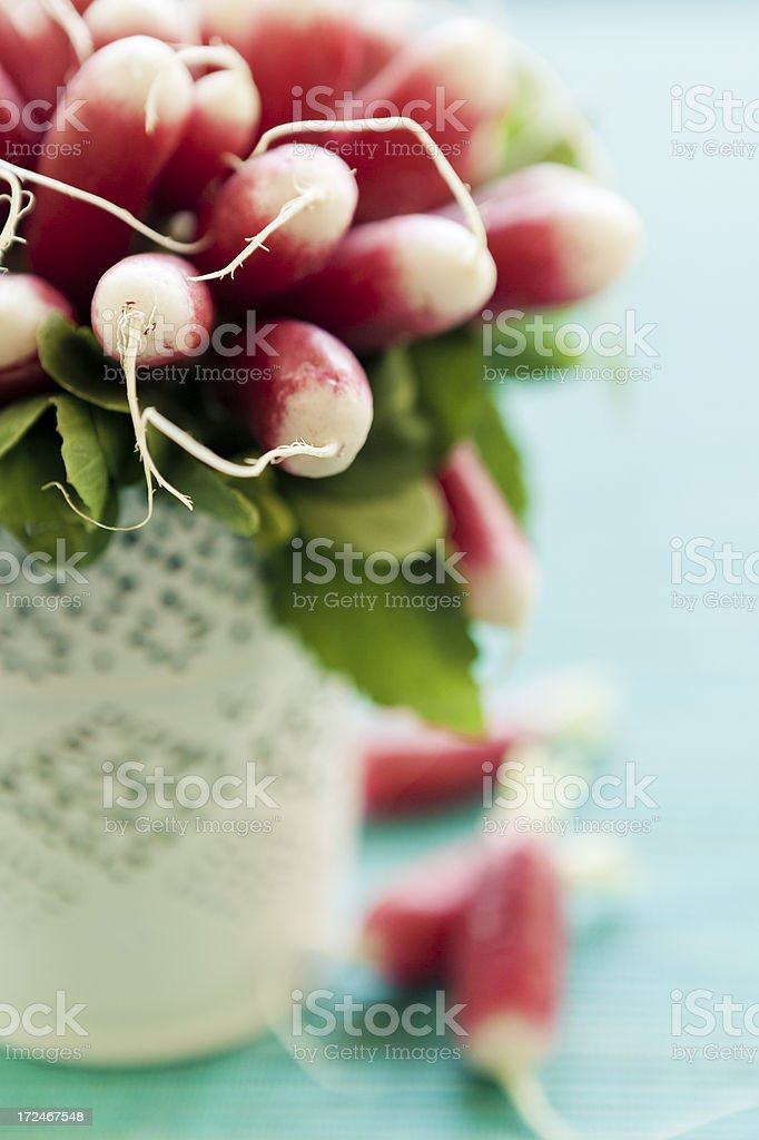 Bouquet Of French Radish royalty-free stock photo