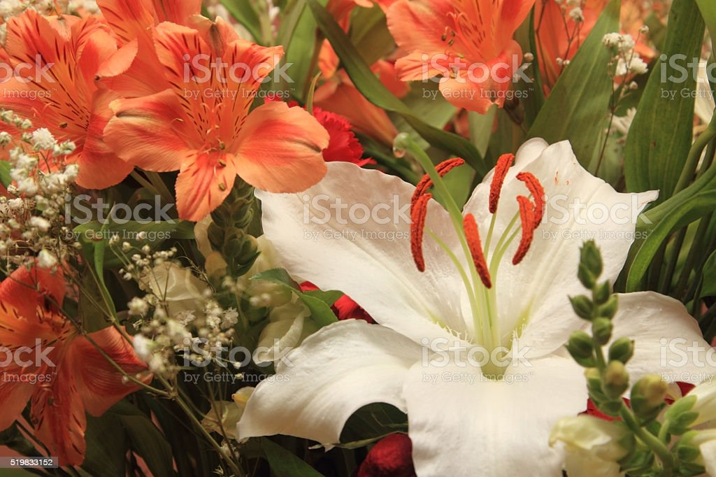 Bouquet of fresh flowers royalty-free stock photo