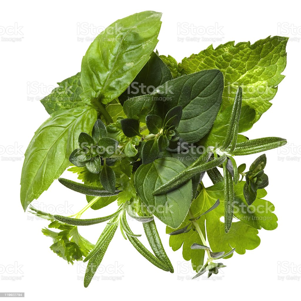 Bouquet of greens on a white background stock photo