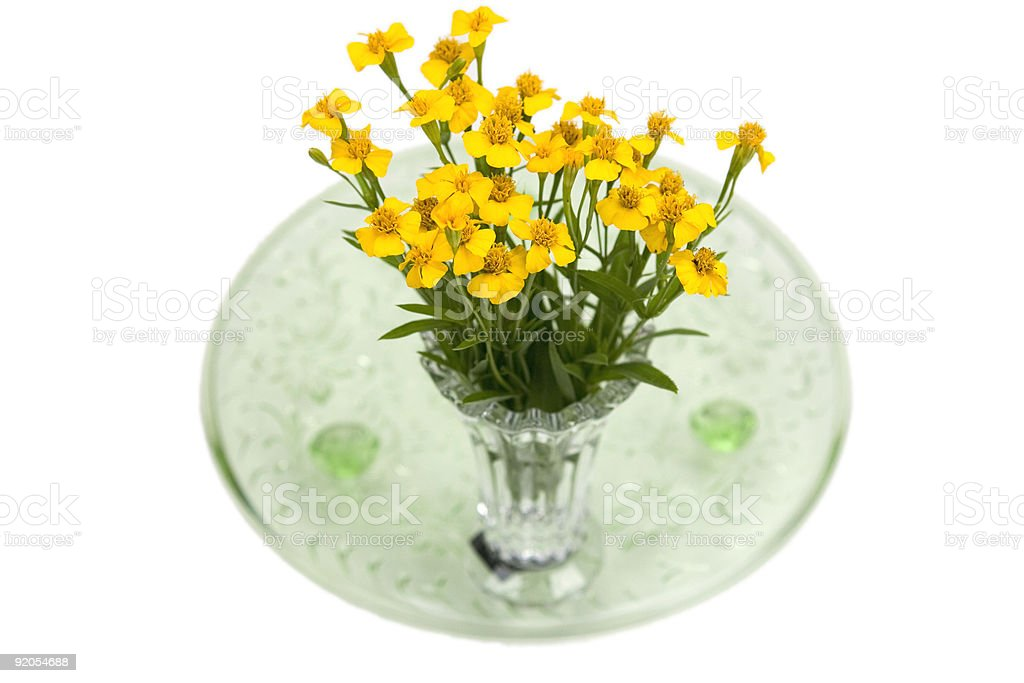 Bouquet of Herbs royalty-free stock photo