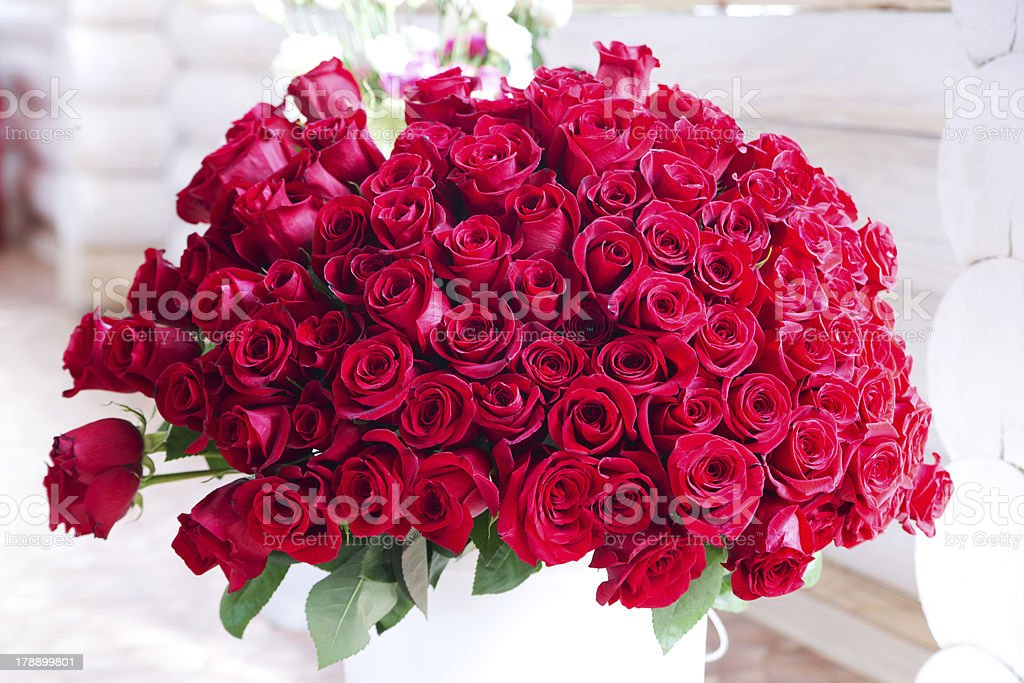 Bouquet of hundreds red roses stock photo