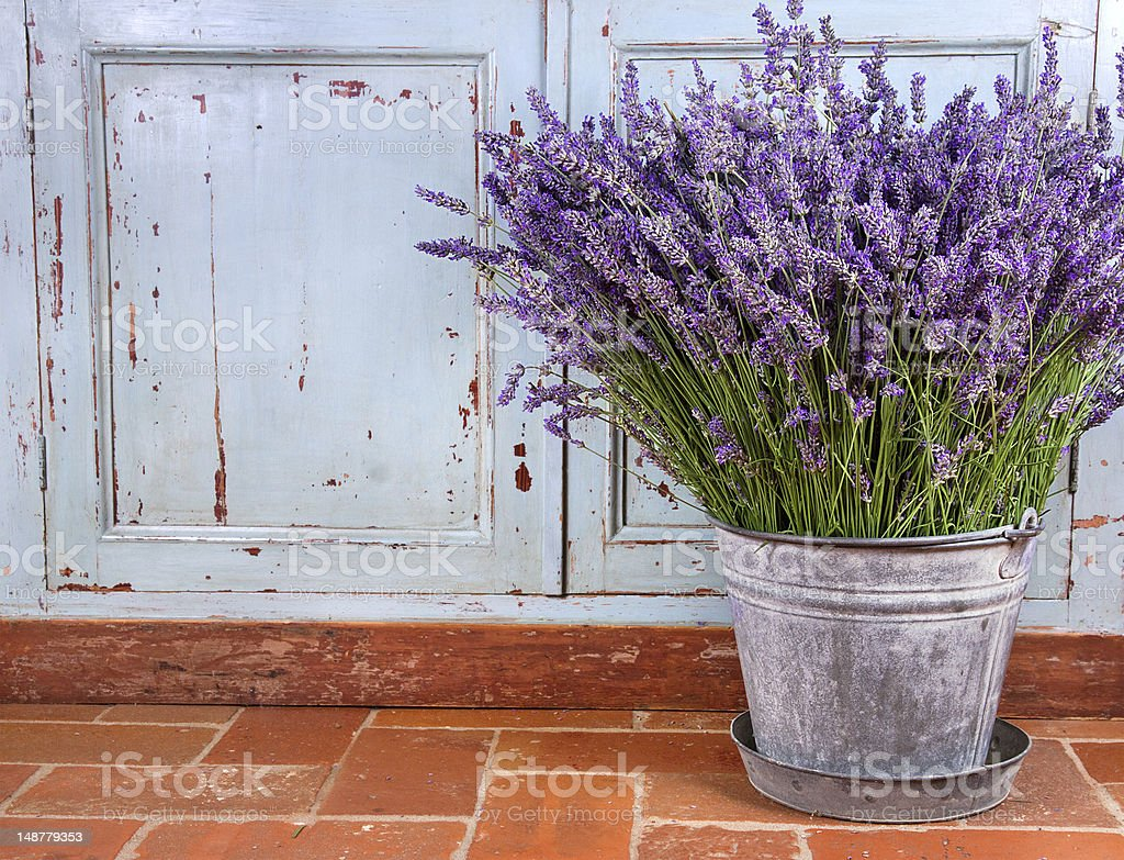 Bouquet of lavender in a rustic setting stock photo