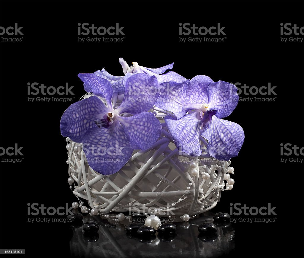 Bouquet of orchids in a vase royalty-free stock photo