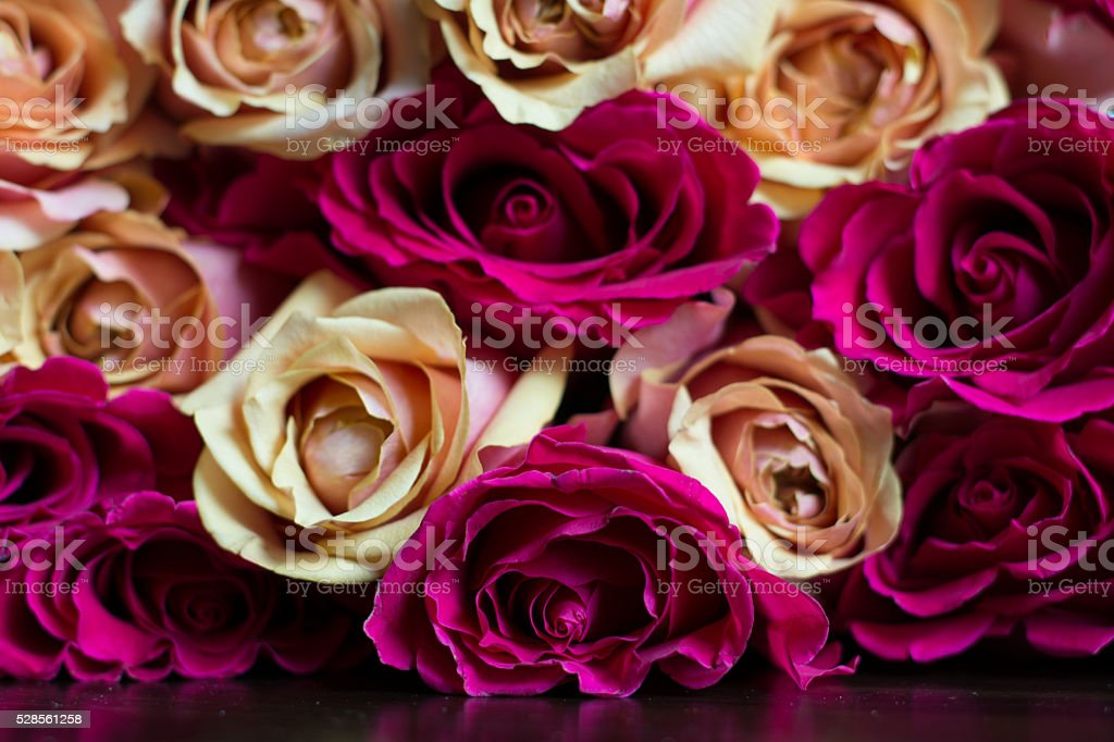 Bouquet of Peach and Pink Roses stock photo